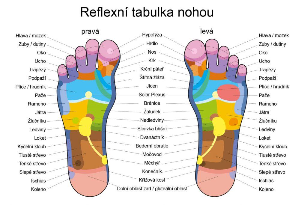 Rizika dlouhodobého stání - reflexní tabulka nohou