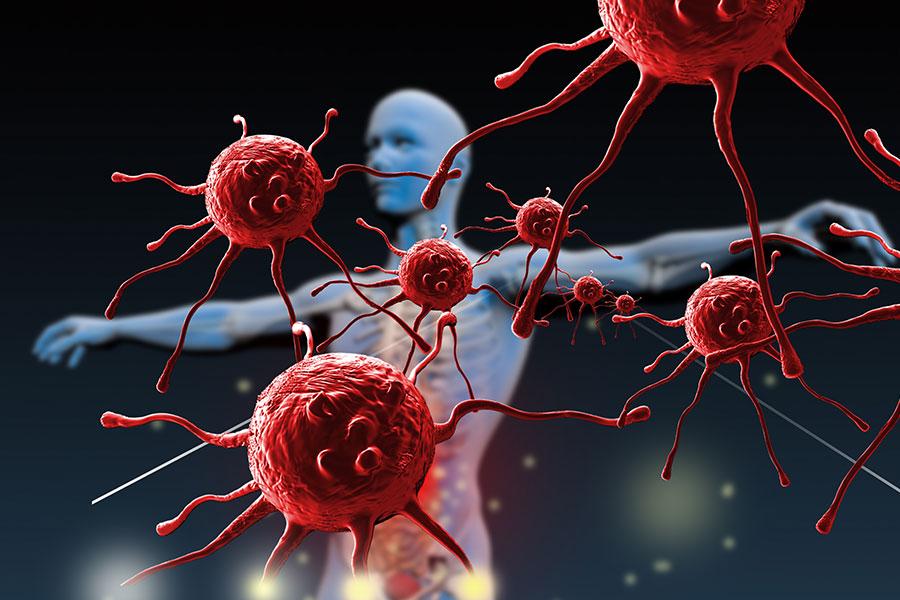Patogeny posilují imunitní systém člověka