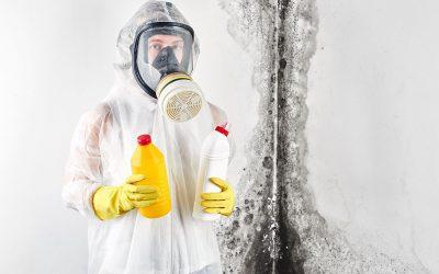 Co je dezinfekce? Metody a způsoby likvidace mikroorganizmů