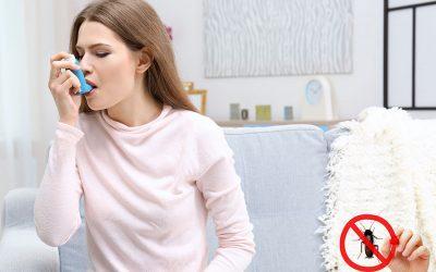 Hmyz a hlodavci, kteří způsobují alergie a astma